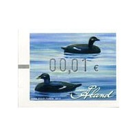2014. Wooden duck decoys (3). Velvet Scoter