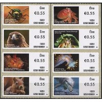 2010. Irish animals and marine life (1)