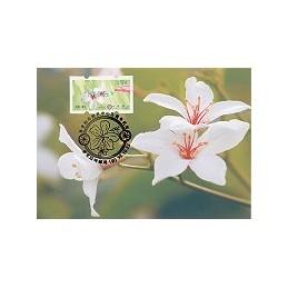 TAIWÁN (2009). Flores Tung (3)- verde. Tarjeta máxima (104) - B