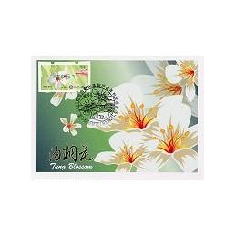 TAIWÁN (2009). Flores Tung (3)- verde. Tarjeta máxima ( 94) 2*