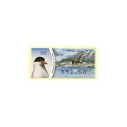 ISRAEL (2010). Charrán común - 008. ATM nuevo