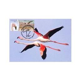 ISRAEL (2010). Flamenco - 001. Tarjeta máxima (1)
