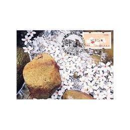 TAIWÁN (2010). Flores Tung (4)- negro. Tarjeta máxima (106)