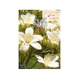 TAIWÁN (2010). Flores Tung (4)- negro. Tarjeta máxima (117)