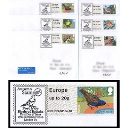 R. UNIDO (2010). Pájaros (1.1) - 002010 9. Sobres P.D. (STAMPEX)