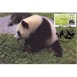 TAIWÁN (2010). Osos panda - negro. Tarjeta máxima (076) *