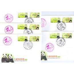 TAIWÁN (2010). Osos panda - negro. Sobres (Flower Stamps Expo)