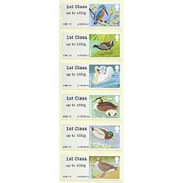 R. UNIDO (2011). Pájaros (3). ATMs nuevos (1st Class - ERROR)