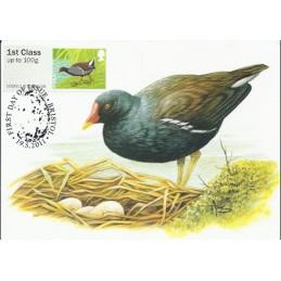 R. UNIDO (2011).. Pájaros (3) - 002011 5. Tarjeta máxima