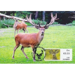 IRLANDA (2011). Animales (2) - 02501. Tarjeta máxima