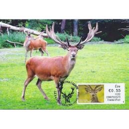 IRLANDA (2011). Animales (2) - 235027. Tarjeta máxima (StdPost)