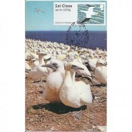R. UNIDO (2011).. Pájaros (4) - 002011 9. Tarjeta máxima *