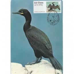R. UNIDO (2011).. Pájaros (4) - 002011 9. Tarjeta máxima **