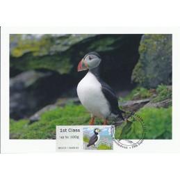 R. UNIDO (2011).. Pájaros (4) - 002011 9. Tarjeta máxima