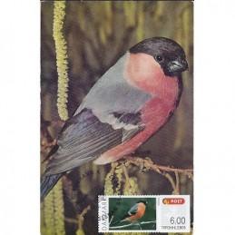 DINAMARCA (2012).. Pájaros (2). Tarjeta máxima (Pyrrhula pyrrhul