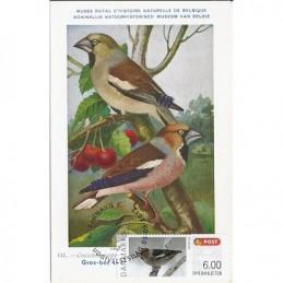 DINAMARCA (2012).. Pájaros (2). Tarjeta máxima (Coccothraustes c