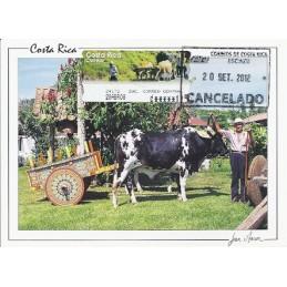 COSTA RICA (2008). Boyero. Tarjeta máxima