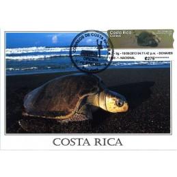 COSTA RICA (2013). Tortuga...