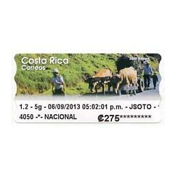 COSTA RICA (2013). Boyero...