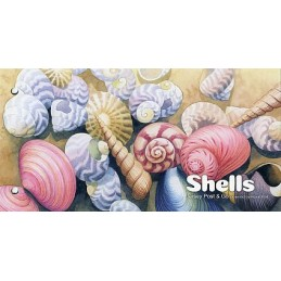 JERSEY (2017). Shells -...