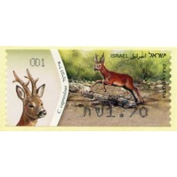 ISRAEL (2011). Roe Deer -...