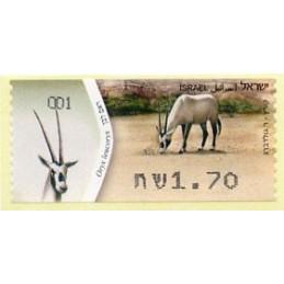 ISRAEL (2011). White oryx -...