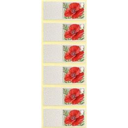 REINO UNIDO (2017).  Common Poppy (Edición 2017).  Etiquetas en blanco (tira de 6)