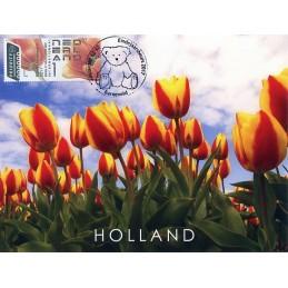 NETHERLANDS (2017). Tulips...