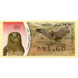 ISRAEL (2009). Short-toed...
