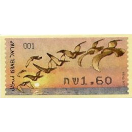 ISRAEL (2010). Water birds...