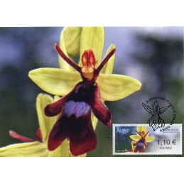 ALAND (2018). Orquídeas...
