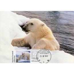 GREENLAND (2019). Polar...