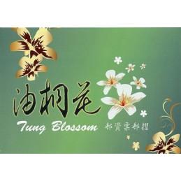 TAIWAN (2009). Tung...