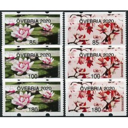 AUSTRIA (2020). Water lily...