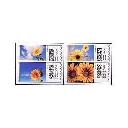 EEUU (2008). 19. Flores. Etiquetas test