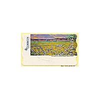 124. Chico Montilla: Las Flores silvestres. Sammer Gallery