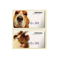 Animais domésticos (Pets) - AMIEL BLUE - Cavy & dog