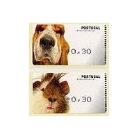 Animales domésticos - AMIEL NEGRO - Cobaya y perro