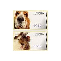 Animais domésticos (Pets) - NewVision BLUE - Cavy & dog