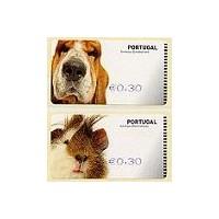 Animales domésticos - SMD AZUL - Cobaya y perro