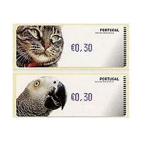 Animales domésticos - Crouzet AZUL - Gato y yaco o loro gris