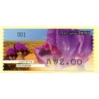 2013. Iris mariae (Endangered flowers 2)