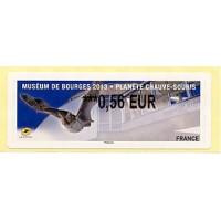 Museum de Bourges 2013 - Planète chauve-souris