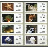 2013. Irish animals and marine life (4)