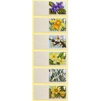 2014. British flora (1) - Spring blooms