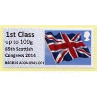2014. Intelligent AR - Impresión '85th Scottish Congress 2014'