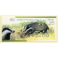 2014. Meles meles (Eurasian badger)