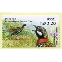 2015.05. Francolinus francolinus (Francolín común)