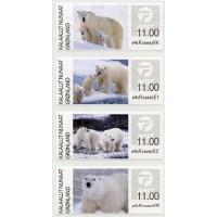 2019. Polar bears