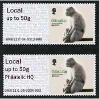 2021. EUROPA Barbary Macaques (Macaca sylvanus)